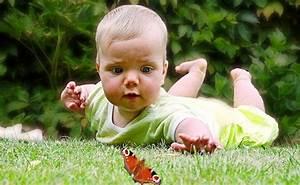 Augenfarbe Baby Berechnen : die augenfarbe beim baby wann ist die augenfarbe eindeutig ~ Themetempest.com Abrechnung