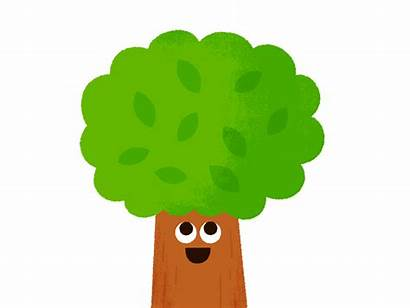 Trees Animation Loss Tree Global Seasons Dribbble