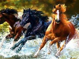 Wild Horses Running through Water | Pretty Horses ...