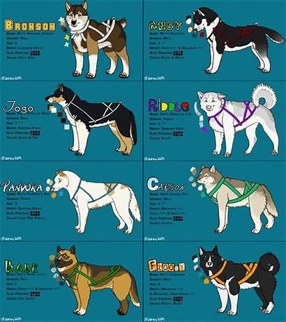 Sled Dogs Dog Breeds Infographic Team Deviantart