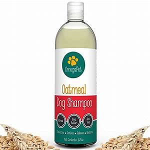 the best natural oatmeal dog shampoo for dry itchy skin With best dog shampoo for dry skin