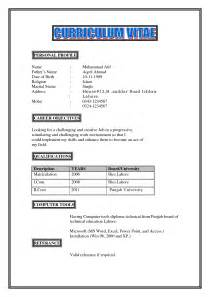 resume writing personal profile best photos of personal profile exles resume personal
