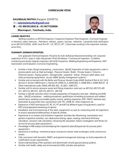 Auditor resume summary