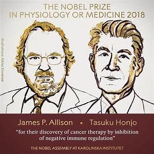 Nobel Prize in Medicine in 2018 awarded for discovery in ...