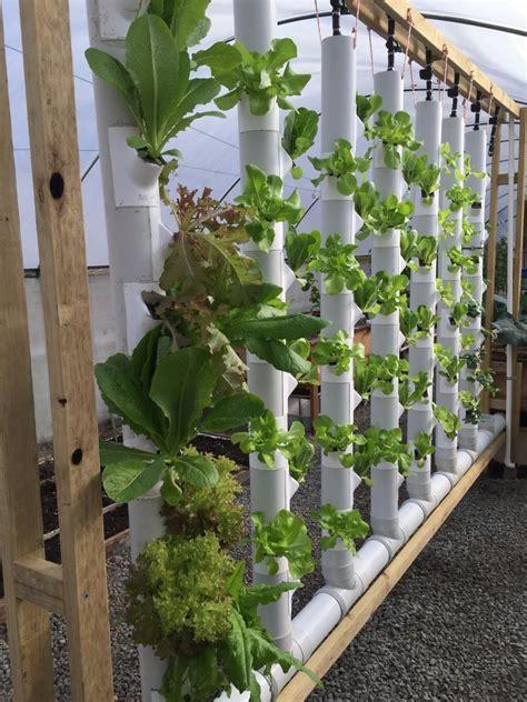 Hydroponic Gardening by Gropockets Vertical Garden Aquaponics Hydroponics Soil