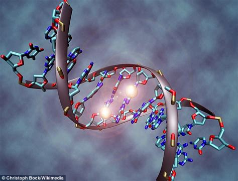 Modification To Dna by Scientists Say They Can Predict If Someone Is By