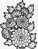 Coloring Flower Peony Flowers Pages Printable Netart Getcolorings Plants sketch template