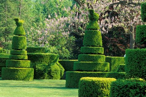 Topiary : Incredible Topiaries