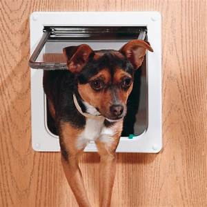 how to do dog flap installation With should i get a dog door
