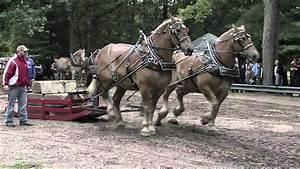 2010 Brethren Horse Pull Part 1 Of 3