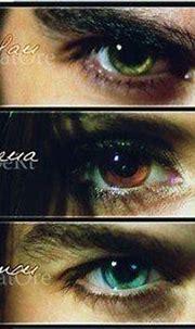 damon salvator, elena gilbert, eyes, ian, nina, paul ...