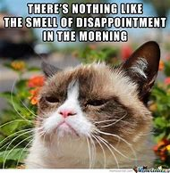 Good Morning Grumpy Cat Meme