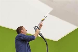 Pistolet Peinture Plafond : wagner w 985 e wallperfect pistolet a peinture basse ~ Premium-room.com Idées de Décoration