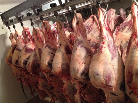 chambre froide boucherie boucherie 22 qualite traçabilité