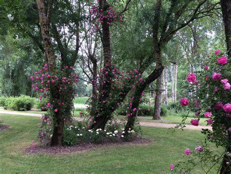 the garden le jardin de la l o i r e d a i l y p h o t o