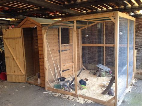 aviary shed 17 best images about bird aviaries on pvc