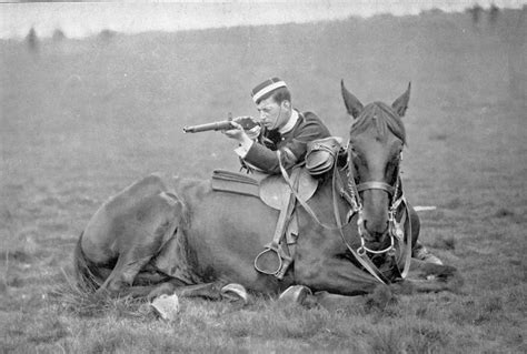 war horses horse history cavalry martini movie henry ww1 wwi film historical animals were carbine civil its ww2 american movies