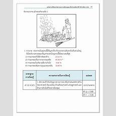 ข้อสอบ Nt ป3 พร้อมเฉลย ปีการศึกษา 2556  สื่อการสอนเด็กประถม Facebook