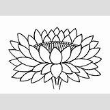 Buddhist Lotus Drawing   500 x 353 jpeg 37kB