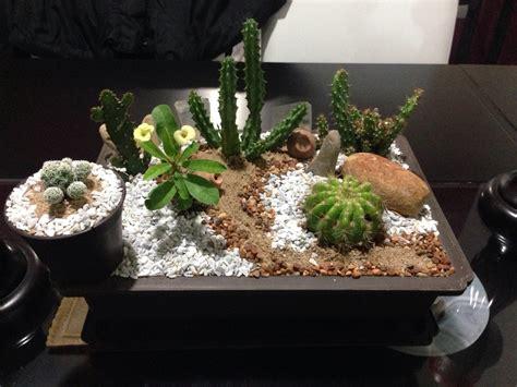 mini jard 237 n de cactus decoraci 243 n con cactus pinterest
