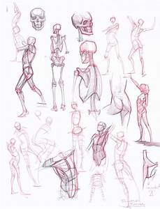 Figuredrawing Info News