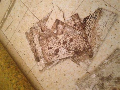asbestos tile doityourselfcom community forums
