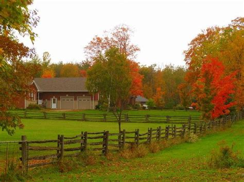 landscaping ideas  colorful fall country home driveways
