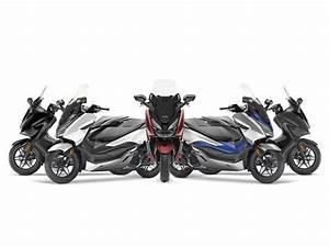 Scooter Forza 125 : pr sentation forza 125 scooter gamme motos honda ~ Medecine-chirurgie-esthetiques.com Avis de Voitures