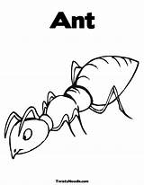 Ant Coloring Pages Printable Outline Hill Colouring Bunny Template Insect Ants Heart Valentine Clip Library Clipart sketch template