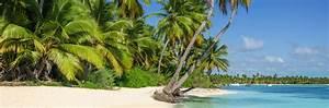 Location Voiture Guadeloupe Comparateur : location de voiture chez autoescape martinique carigami ~ Medecine-chirurgie-esthetiques.com Avis de Voitures