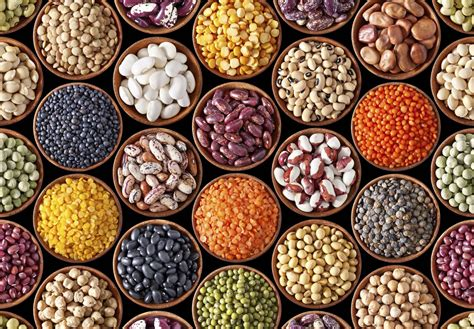 photos cuisines relook馥s government to relook at minimum support price of pulses cfo india in