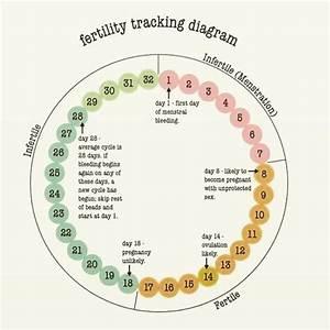 Fertility Tracking Diagram