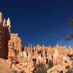 Bryce Canyon Sehenswürdigkeiten : queen 39 s garden trail lohnt es sich aktuelle 2018 ~ Buech-reservation.com Haus und Dekorationen