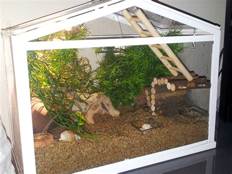 bernard l hermite aquarium revenir en haut