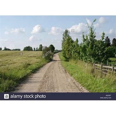 Gravel road. Estonian landscape. Tartu county. Estonia