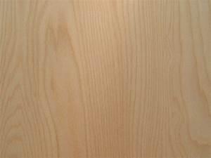 PDF DIY Birch Wood Veneer Download burl maple wood