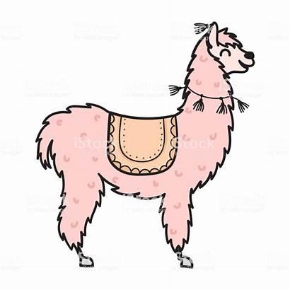 Clipart Llama Lama Cartoon Drawing Clip Alpaca