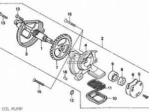 bg fuel pump ford 73 diesel fuel pump wiring diagram odicis With stihl fuel pump