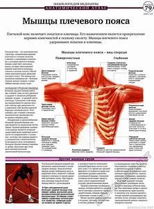 Папилломы по гинекологии лечение