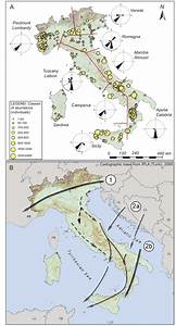 Autumn Migration Routes Of Common Crane In Italy From 2001