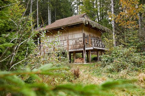 Nationalpark Bayerischer Wald: Wildniscamp, Watzlik-Hain