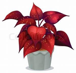 Pflanze Mit Roten Blüten : eine pflanze mit roten bl ttern vektorgrafik colourbox ~ Eleganceandgraceweddings.com Haus und Dekorationen