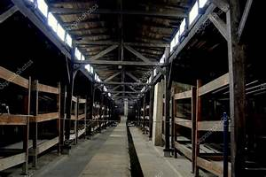 Auschwitz, Poland: Dormitory Bunk Beds at Concentration ...