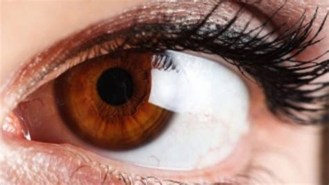 brown eye colors change your eye color to brown in 10 seconds hypnosis