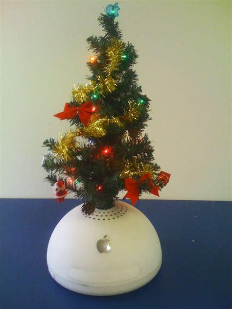 apple christmas trees apple gazette