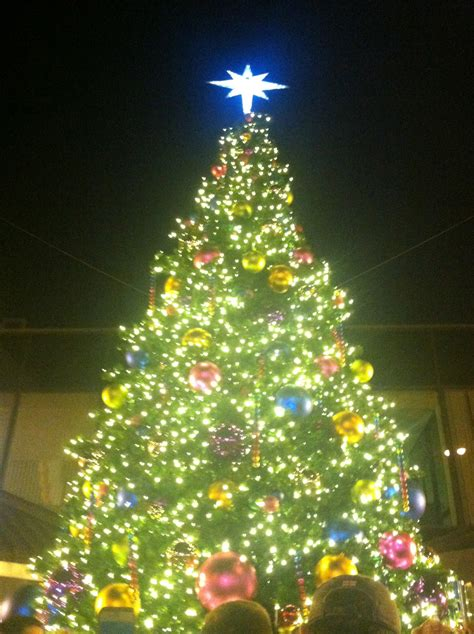 tree lighting ceremony in clarksville tn photos hundreds of castro neighbors turn out for annual