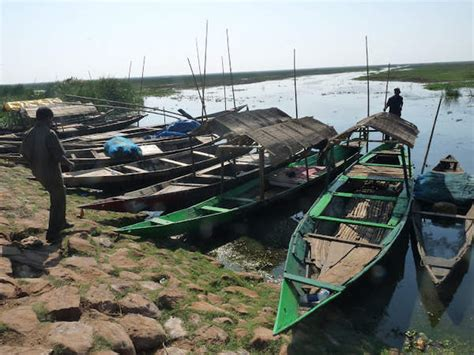 Boat Care In Odisha by Mangalajodi A Paradise For Bird India Travel