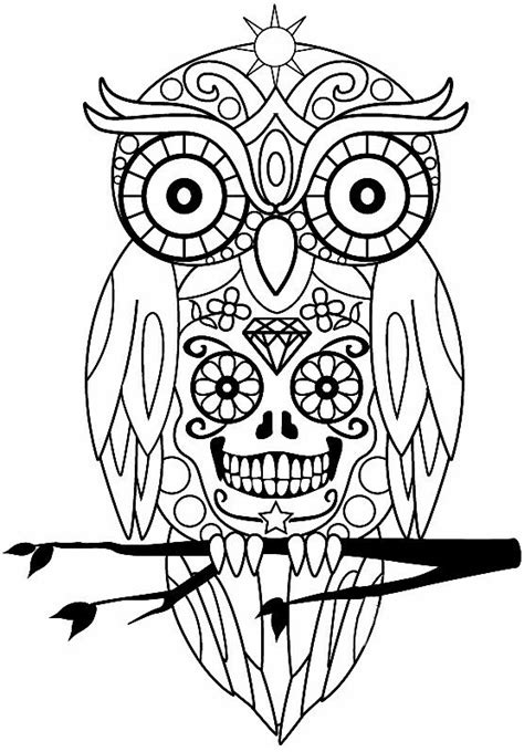 Pin by Kim Ellington on Patterns | Owl coloring pages