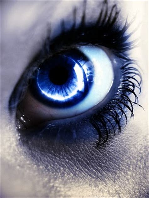 magical mysterious eyes xcitefunnet