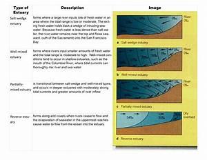 Gc7h2yb Part 4  Placing The Spot U2019light U2019 On Waquoit Bay